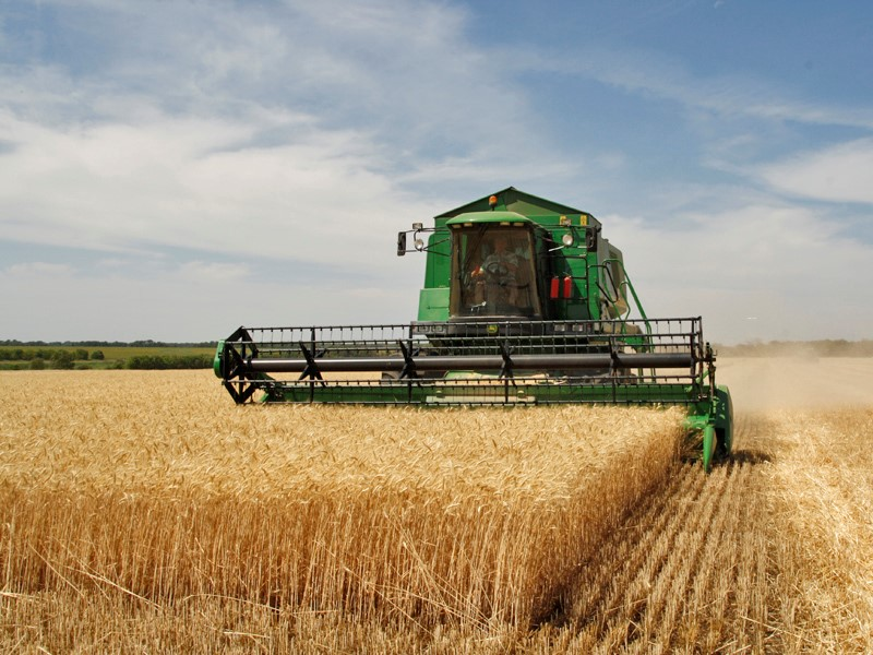 IoT in agricultura